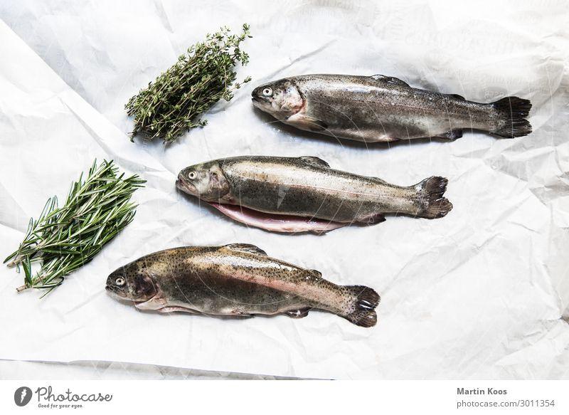 Forellen küchenfertig Lebensmittel Fisch Kräuter & Gewürze Ernährung Essen Bioprodukte Vegetarische Ernährung Diät Slowfood Italienische Küche Lifestyle