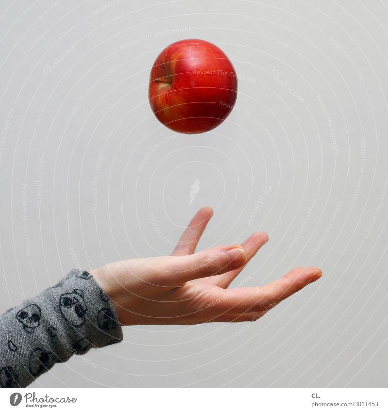 hand wirft apfel Lebensmittel Frucht Apfel Ernährung Essen Frühstück Bioprodukte Vegetarische Ernährung Diät Fasten Gesundheit Gesunde Ernährung Mensch