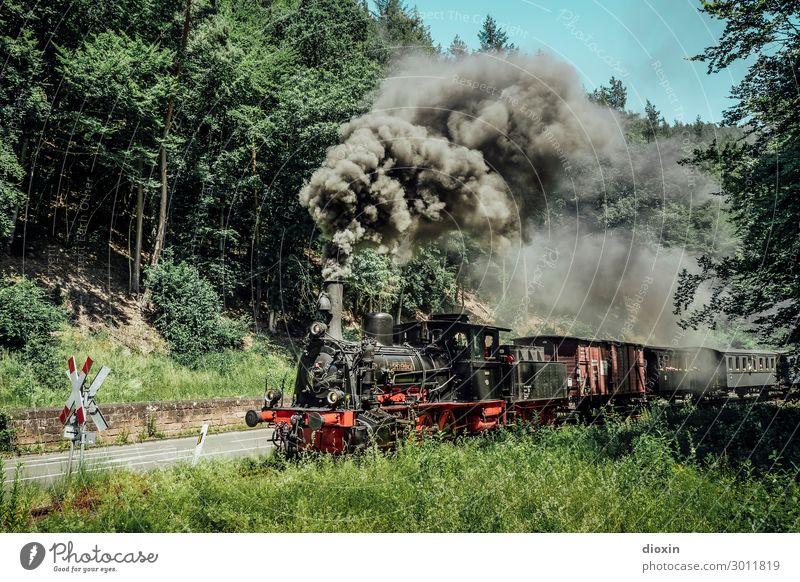 I hear the train a comin' Technik & Technologie Natur Landschaft Himmel Wolkenloser Himmel Sommer Baum Gras Wald Berge u. Gebirge Pfälzerwald Verkehr