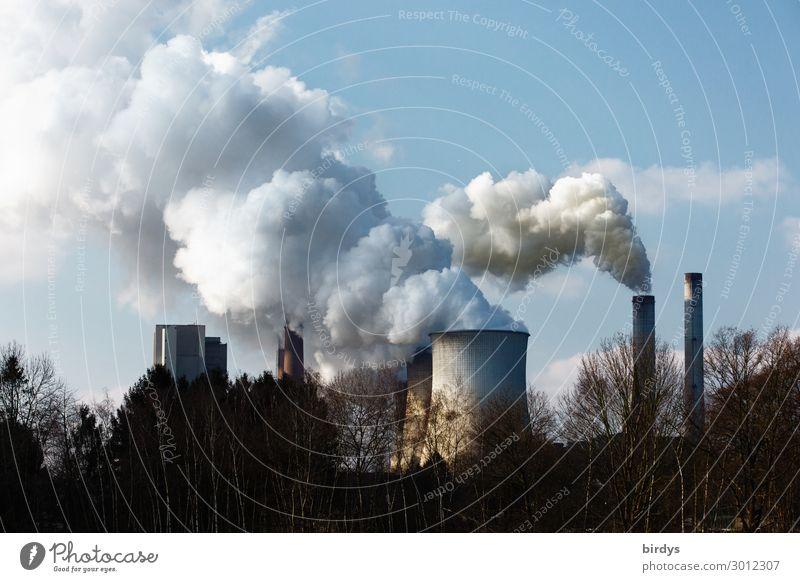 Ursache des Klimawandels l menschgemacht Energiewirtschaft Kohlekraftwerk Himmel Baum Deutschland Schornstein Kühlturm Abgas Rauchen authentisch bedrohlich