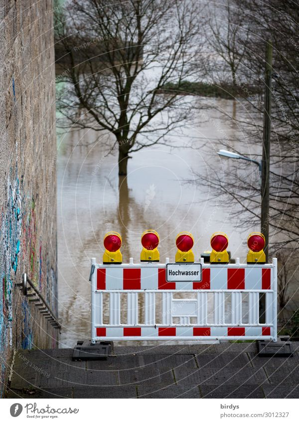Hochwasser Baum Winter Herbst Wand Wege & Pfade Mauer Treppe Schriftzeichen Schilder & Markierungen authentisch Zukunft gefährlich Hinweisschild bedrohlich