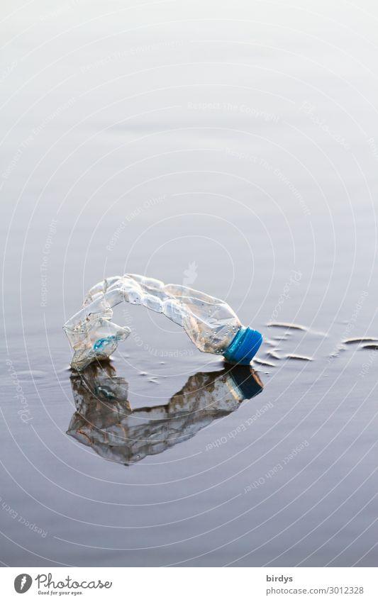 Nahrungskreislauf Wasser Strand Meer Wattenmeer PE-Flaschen Kunststoffmüll authentisch kaputt blau grau Laster Stress Desaster bedrohlich