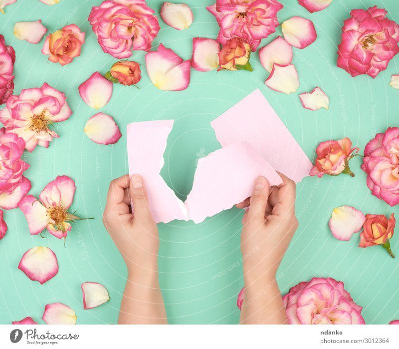 zwei Hände halten ein leeres rosa Blatt. Design schön Sommer Dekoration & Verzierung Feste & Feiern Hochzeit Geburtstag Business Hand Pflanze Blume Blüte Papier