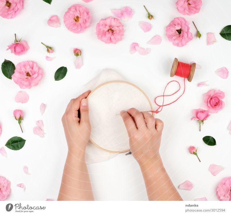 zwei weibliche Hände, die einen runden Holzbügel halten. Freizeit & Hobby Basteln Dekoration & Verzierung Arbeit & Erwerbstätigkeit Handwerk Frau Erwachsene