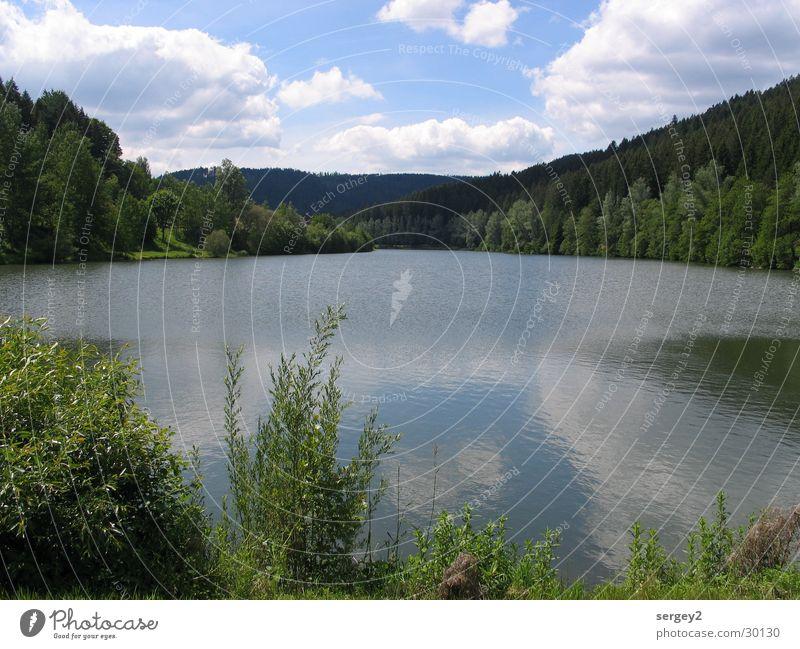Idyllischer See ruhig Reflexion & Spiegelung Wasser Büme Himmel Idylle blau