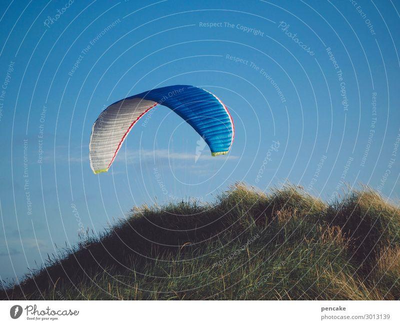 luftig | mit schirm, charme und... Natur blau Landschaft Wärme Sport Küste Gras fliegen frei Luft Schönes Wetter Düne Nordsee Blauer Himmel maritim