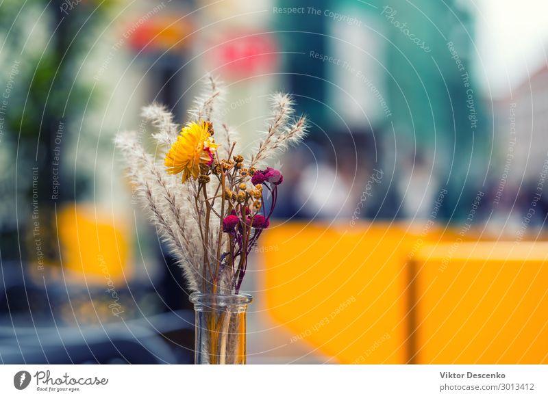 Blumenstrauß auf einem Tisch in einem Außencafé Frühstück Design schön Erholung Ferien & Urlaub & Reisen Tourismus Sommer Haus Dekoration & Verzierung Möbel
