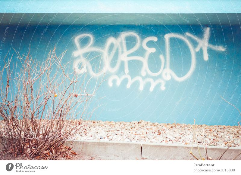 gelangweilte Fassade Pflanze Sträucher Stadt Haus Bauwerk Gebäude Architektur Mauer Wand Dekoration & Verzierung Beton Zeichen Schriftzeichen Graffiti Linie