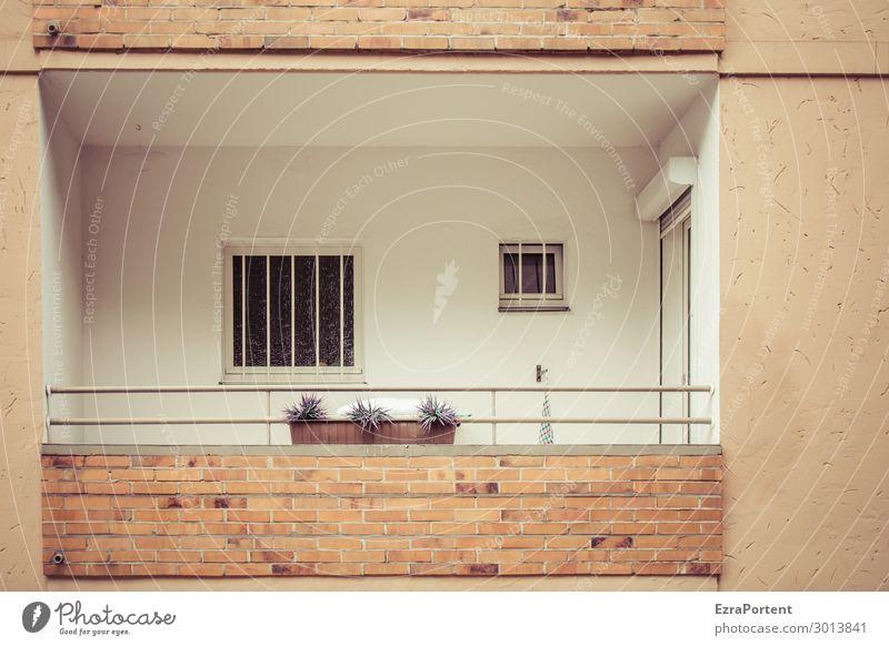 Balkon Pflanze Stadt weiß Haus Einsamkeit Fenster Architektur Wand Traurigkeit Gebäude Mauer Stein braun Fassade grau Linie