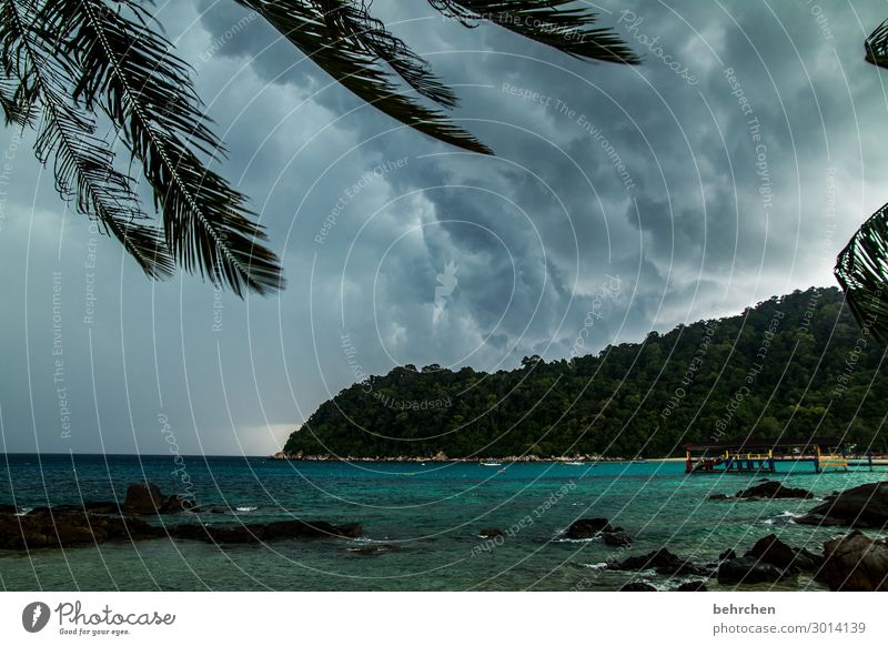 luftig | bis stürmisch Himmel Ferien & Urlaub & Reisen Natur Landschaft Meer Wolken Ferne Strand Küste Tourismus außergewöhnlich Freiheit Ausflug Regen Wellen