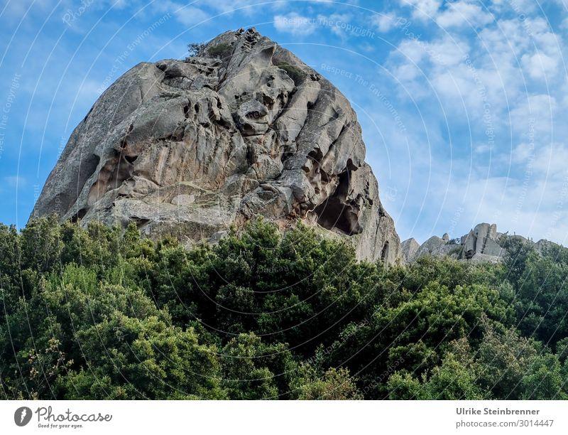 Steinriesen Himmel Ferien & Urlaub & Reisen Natur Pflanze Landschaft Wolken Umwelt Frühling natürlich außergewöhnlich Felsen Kraft Sträucher Schönes Wetter groß