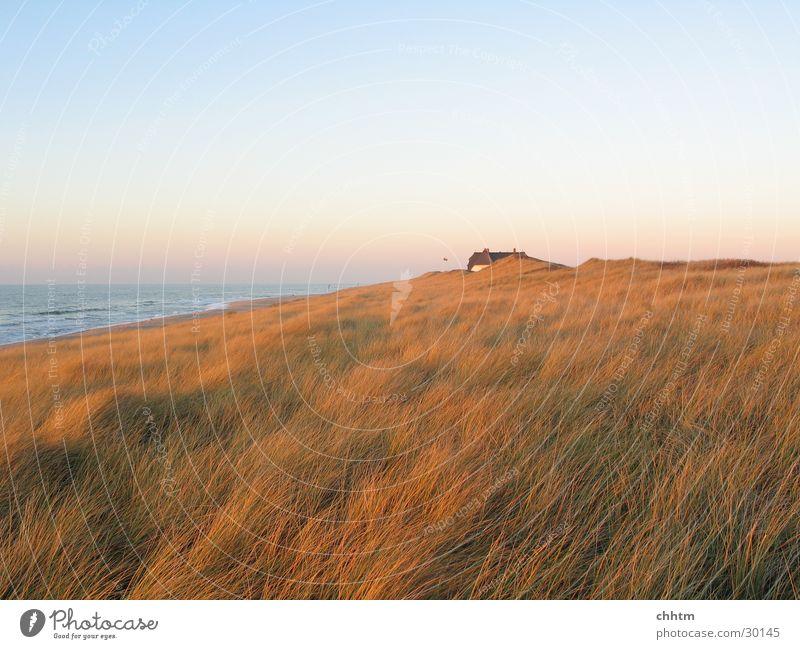 Haus in den Dünen Meer Einsamkeit Ferne Stranddüne Nordsee Abenddämmerung November Sylt
