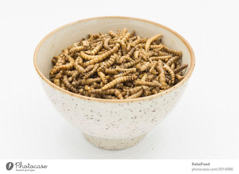 Mehlwürmer Krustentiere Tenebrio Molitor isoliert Schalen & Schüsseln Körper Natur Tier Wurm Verpackung frieren Ekel frisch gruselig natürlich braun gelb