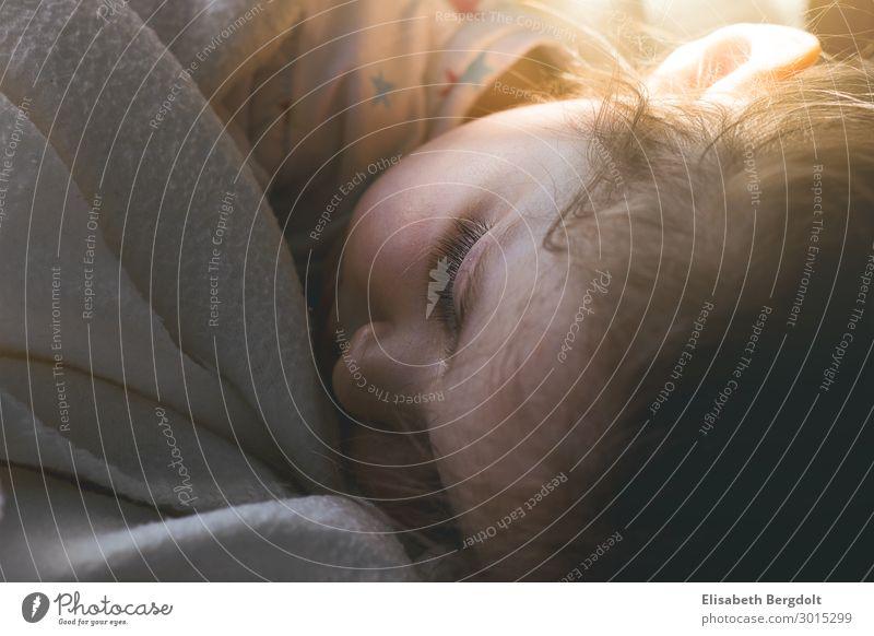 Schlafenendes Kind Mensch schön Sonne ruhig Mädchen Gesicht Auge feminin Kopf Häusliches Leben träumen Kindheit Schönes Wetter schlafen Kleinkind
