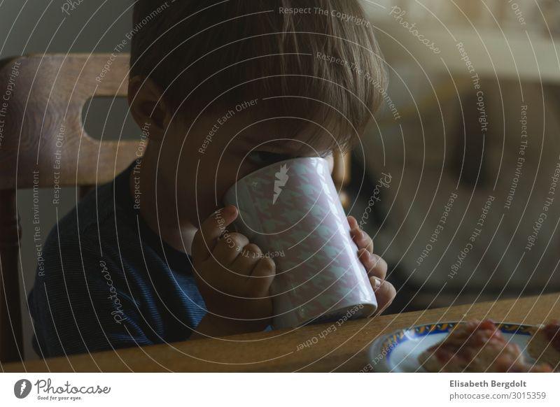 kleiner Junge trinkt am tisch aus einer Tasse Lebensmittel Ernährung Abendessen Getränk trinken Heißgetränk Kakao Teller Becher Häusliches Leben Wohnung Tisch