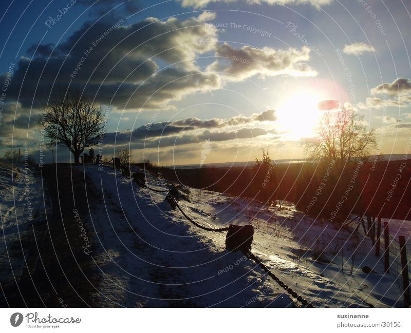 wintersonne 2 Baum Sonne Winter Schnee Wege & Pfade Schweden Vätternsee Motala
