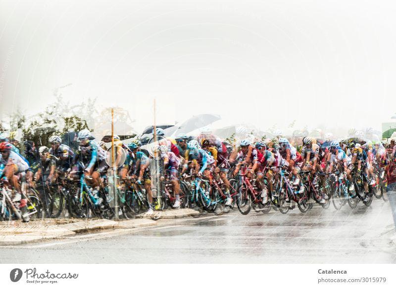 Tour sportlich Leben Sportler Sportmannschaft Fahrradfahren Radrennen maskulin Menschengruppe Sommer schlechtes Wetter Regen Dorf Straße Rennrad Regenschirm