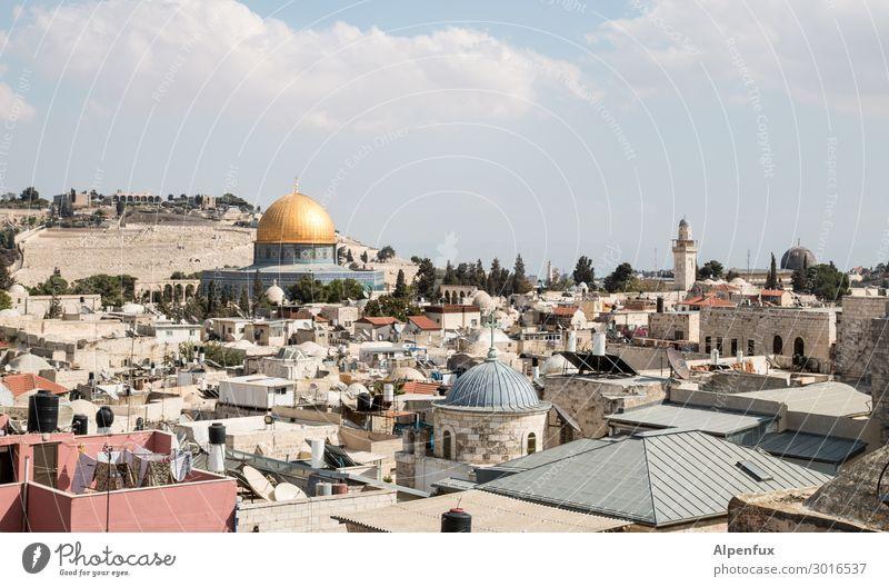 Jerusalem Palästina Israel Altstadt Kirche Moschee Sehenswürdigkeit Wahrzeichen Felsendom Ölberg Al-Aksa Moschee Aggression Partnerschaft chaotisch Erholung