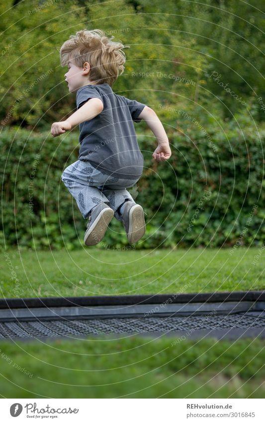 Junge springt auf einem Trampolin Kind Mensch Natur Freude Umwelt natürlich Wiese Bewegung Glück klein Spielen fliegen Freizeit & Hobby springen Park