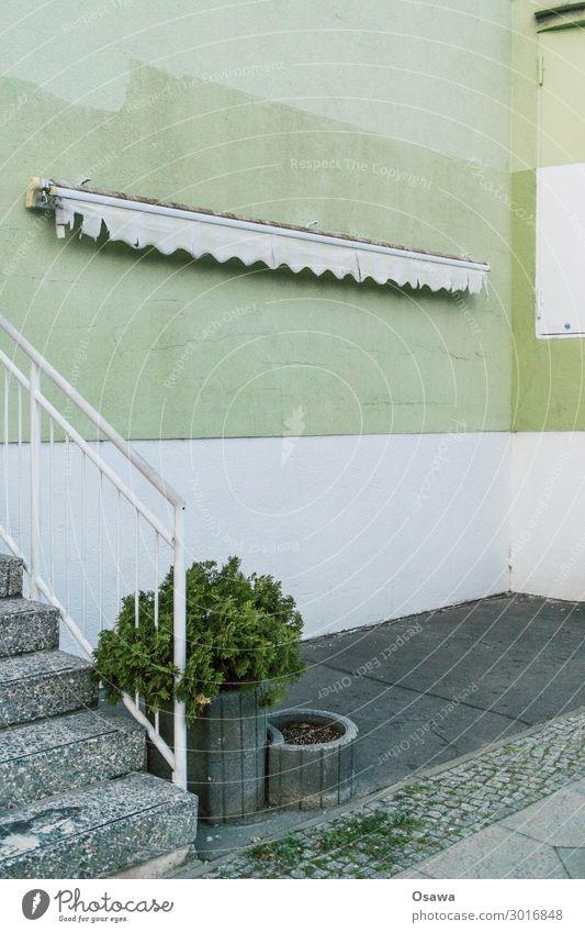Markise mit Treppe und Flora Menschenleer Haus Bauwerk Gebäude Architektur grau grün weiß Beton Treppengeländer Pflanze Klappe Sträucher Zierpflanze Ecke