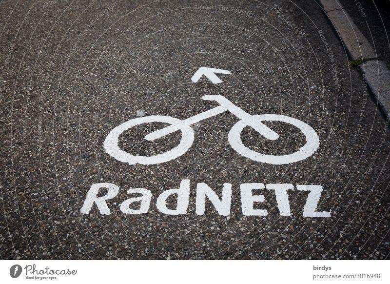 Radwege Fahrradfahren Verkehr Verkehrswege Straße Verkehrszeichen Verkehrsschild Fahrradweg Zeichen Schriftzeichen Pfeil authentisch nachhaltig positiv grau