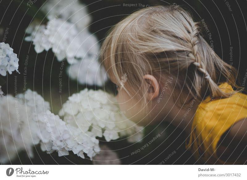 wie das duftet Mensch feminin Kind Kleinkind Kindheit Leben Kopf Gesicht Nase 1 1-3 Jahre Umwelt Natur Sommer Klima Klimawandel Schönes Wetter Pflanze Blüte