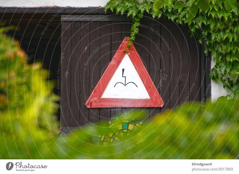 Der Blitz soll dich beim Sch****en treffen ... ? Sommer Freude Holz Garten außergewöhnlich Ausflug Metall Tür Schilder & Markierungen authentisch Sträucher