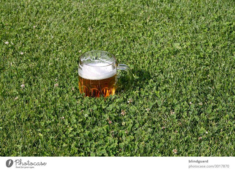 Zum Wohl Lebensmittel Frühstück Mittagessen Abendessen Getränk Bier Glas Glück Party Veranstaltung ausgehen Feste & Feiern trinken Oktoberfest Hochzeit