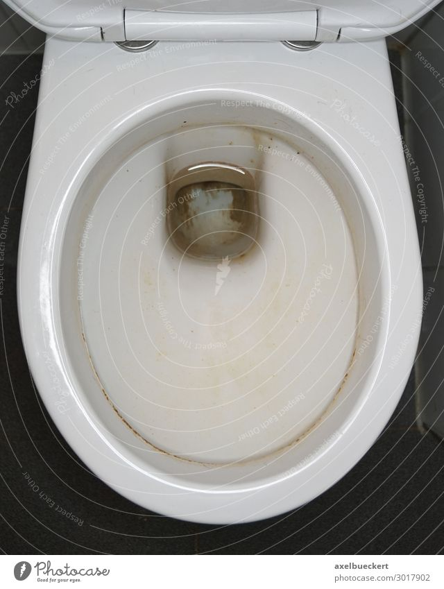 dreckige Toilette Bad Ekel gelb Urin urinstein Fleck Sauberkeit unhygienisch Öffentliche Toilette toilettenschüssel Farbfoto Innenaufnahme Nahaufnahme