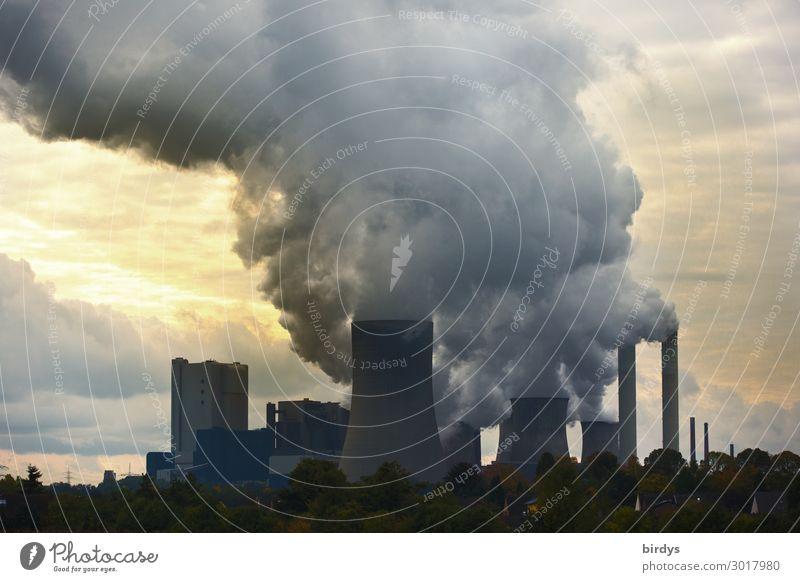 Klimakiller Braunkohle RWE - Braunkohlenkraftwerk Baum dunkel Deutschland Textfreiraum Energiewirtschaft bedrohlich Abenddämmerung Abgas Schornstein Klimawandel