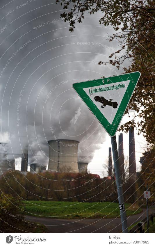 unglaublich aber wahr Energiewirtschaft Erneuerbare Energie Kohlekraftwerk Klimawandel Baum Schilder & Markierungen authentisch bedrohlich dunkel Zukunftsangst