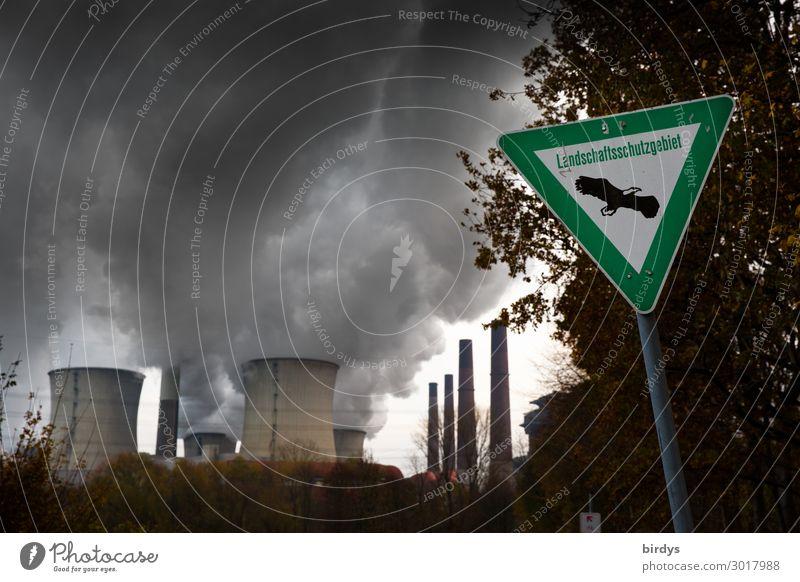 Zynismus Baum dunkel Deutschland Textfreiraum Energiewirtschaft Schilder & Markierungen authentisch bedrohlich Abgas Politik & Staat Klimawandel