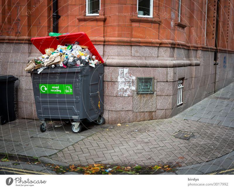 Müllproblematik Dienstleistungsgewerbe Müllbehälter Müllabfuhr Müllentsorgung Stadt Menschenleer Haus Fassade Wege & Pfade Bürgersteig warten authentisch Ekel