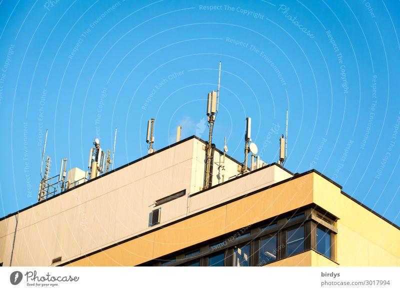 5G LTE 4G ... blau Stadt Haus gelb sprechen Häusliches Leben leuchten Hochhaus Technik & Technologie Telekommunikation Erfolg authentisch Schönes Wetter Zukunft
