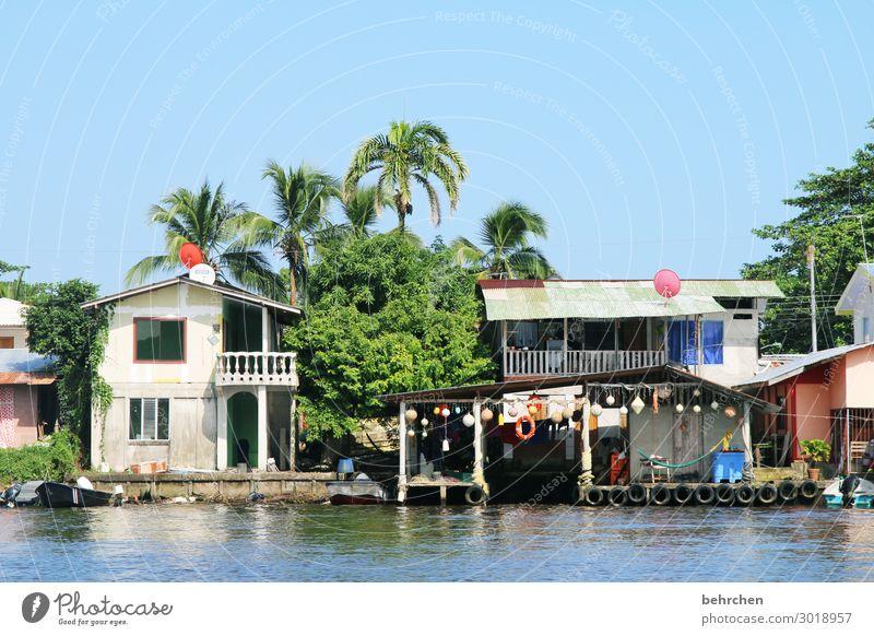 leben am fluss, am tortuguero Costa Rica Außenaufnahme Farbfoto Menschenleer Natur Sonnenlicht Ferien & Urlaub & Reisen Abenteuer Ausflug Tourismus Freiheit