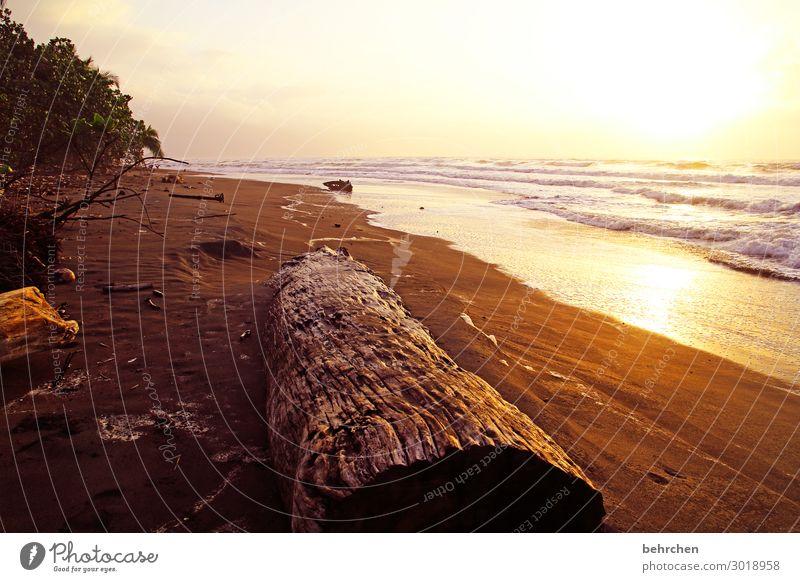 erwachen Ferien & Urlaub & Reisen Tourismus Ausflug Abenteuer Ferne Freiheit Umwelt Natur Landschaft Wasser Himmel Wellen Küste Strand Meer genießen träumen