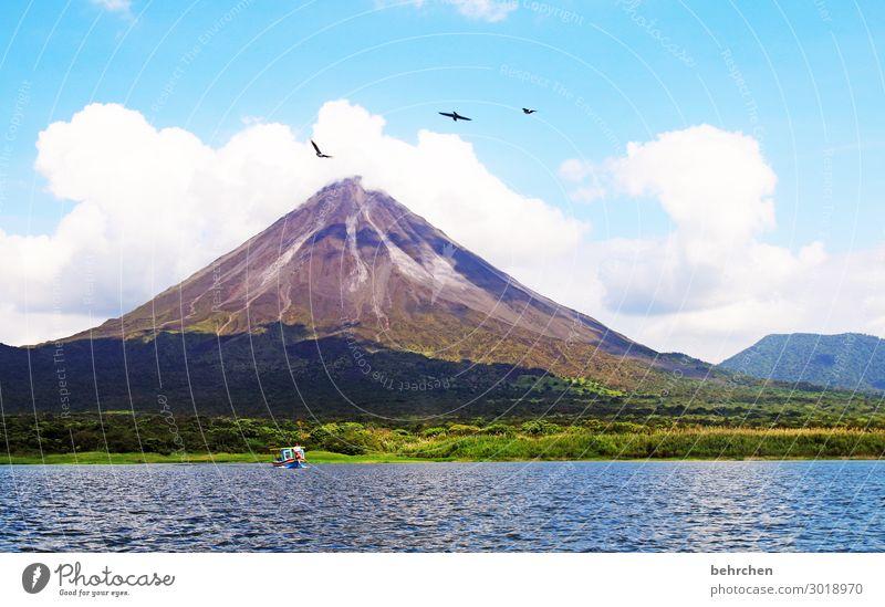 bötchen und vögelchen Himmel Ferien & Urlaub & Reisen Natur Wasser Landschaft Wolken Ferne Berge u. Gebirge Tourismus außergewöhnlich Freiheit See Vogel