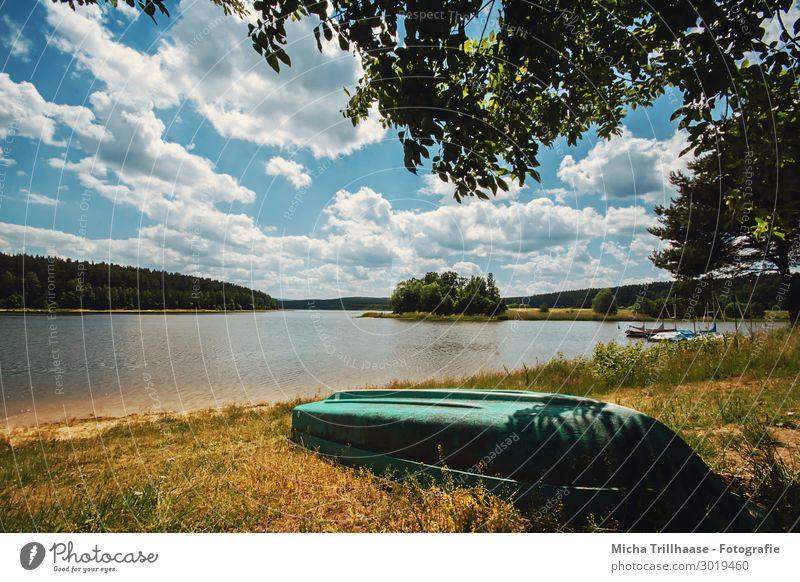 Blick über den See Ferien & Urlaub & Reisen Tourismus Ausflug Sommer Sommerurlaub Natur Landschaft Wasser Himmel Wolken Sonnenlicht Schönes Wetter Baum Seeufer