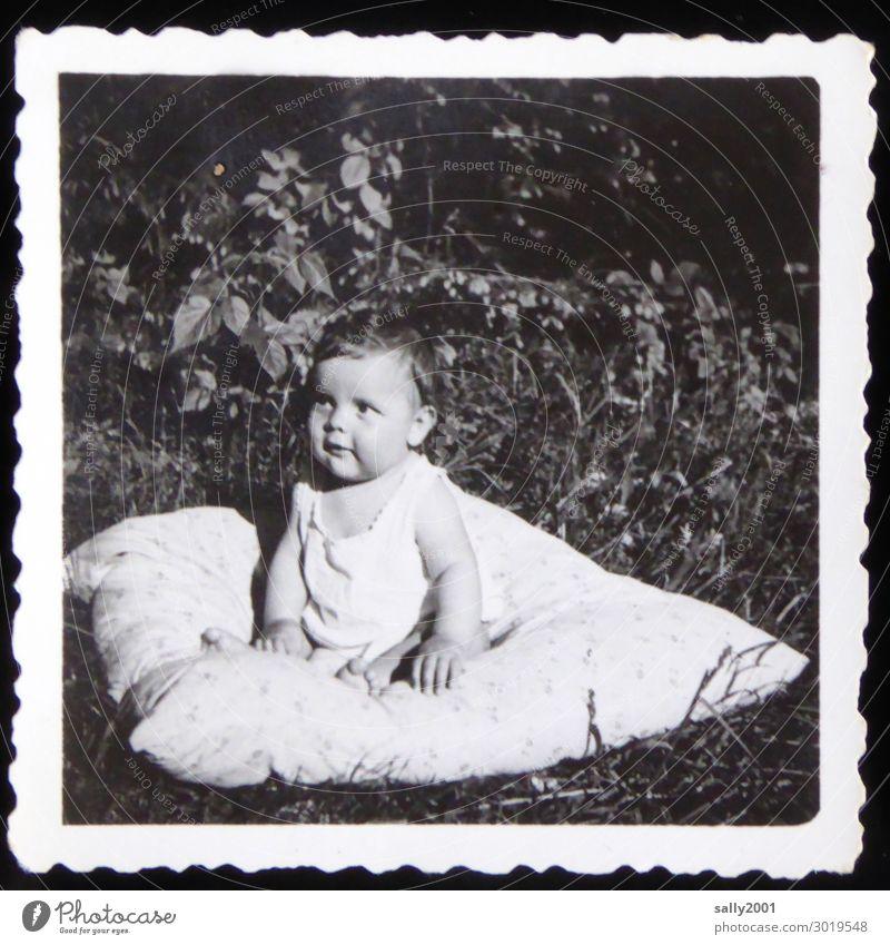 Lieblingsplätzchen... Mensch maskulin Baby Junge 1 0-12 Monate Unterwäsche beobachten Denken Erholung sitzen frei Freundlichkeit Neugier niedlich Beginn