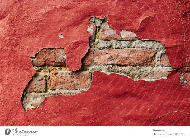 Diese Wand könnte was erzählen! Dänemark Haus Mauer alt authentisch einfach kaputt rot Gefühle Vergänglichkeit Backstein Putz Farbe abblättern