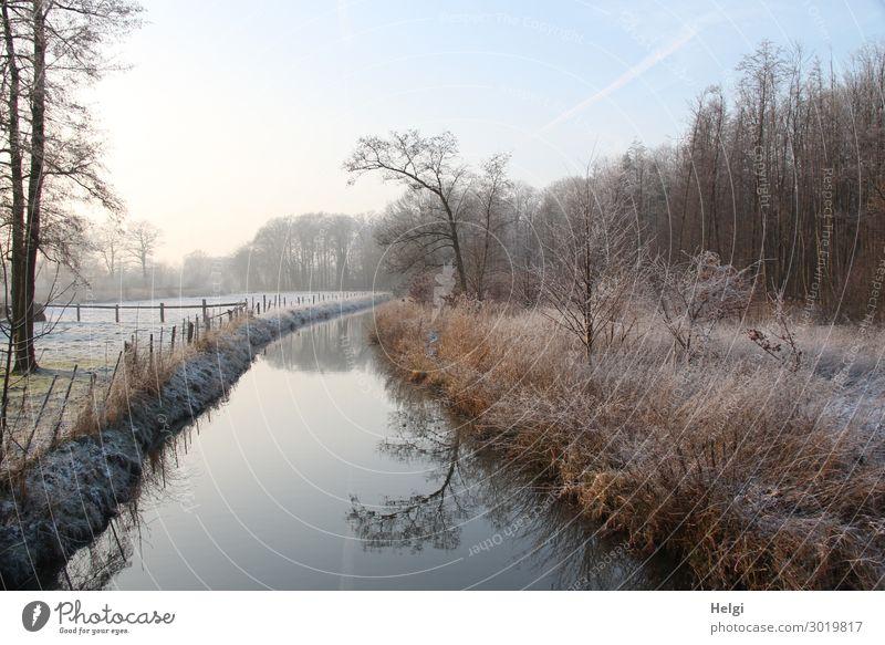 frostige Winterlandschaft am Morgen mit Fluss, Bäumen, Gräsern und Zaun Umwelt Natur Landschaft Pflanze Wasser Himmel Eis Frost Baum Gras Sträucher Feld Wald