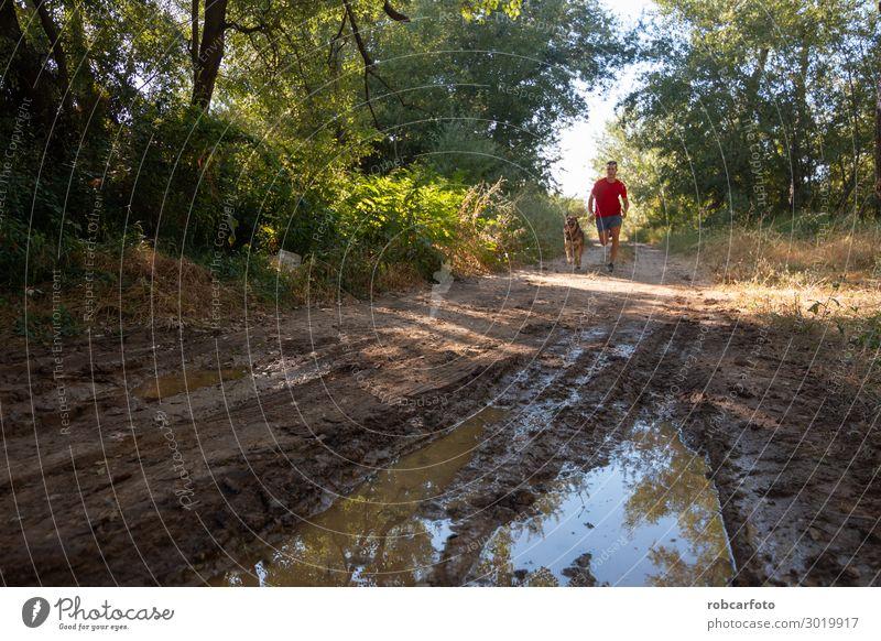 hinüberlaufend Freude Glück Freizeit & Hobby Sommer Sport Joggen Mann Erwachsene Natur Landschaft Tier Himmel Gras Haustier Hund Fitness sportlich Zusammensein