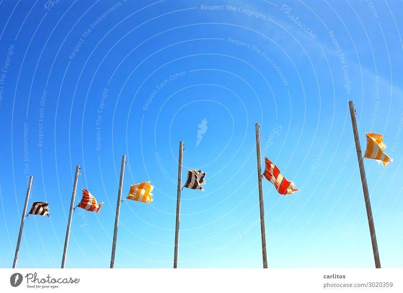 Flaggen im Wind I Himmel Ferien & Urlaub & Reisen blau Reisefotografie Tourismus Fahne Sturm Fahnenmast Kanaren Lanzarote