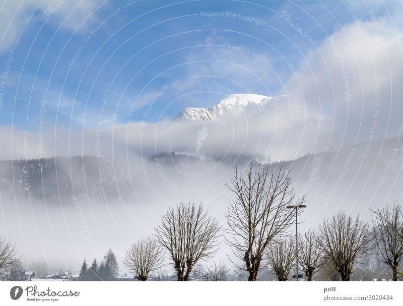 cloudy alpine scenery Winter Berge u. Gebirge Natur Wolken Nebel Baum Wald Hügel Alpen Gipfel Holz kalt friedlich Idylle Berghang Bayern Berchtesgadener Alpen