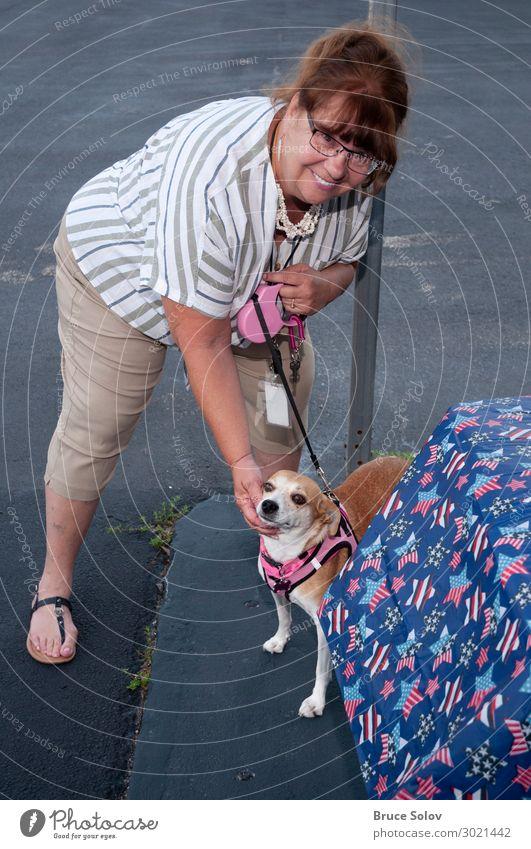 Eine Frau und ihr Hund Feste & Feiern Arbeit & Erwerbstätigkeit Arbeitsplatz Büro Dienstleistungsgewerbe Mensch feminin Junge Frau Jugendliche Erwachsene 1