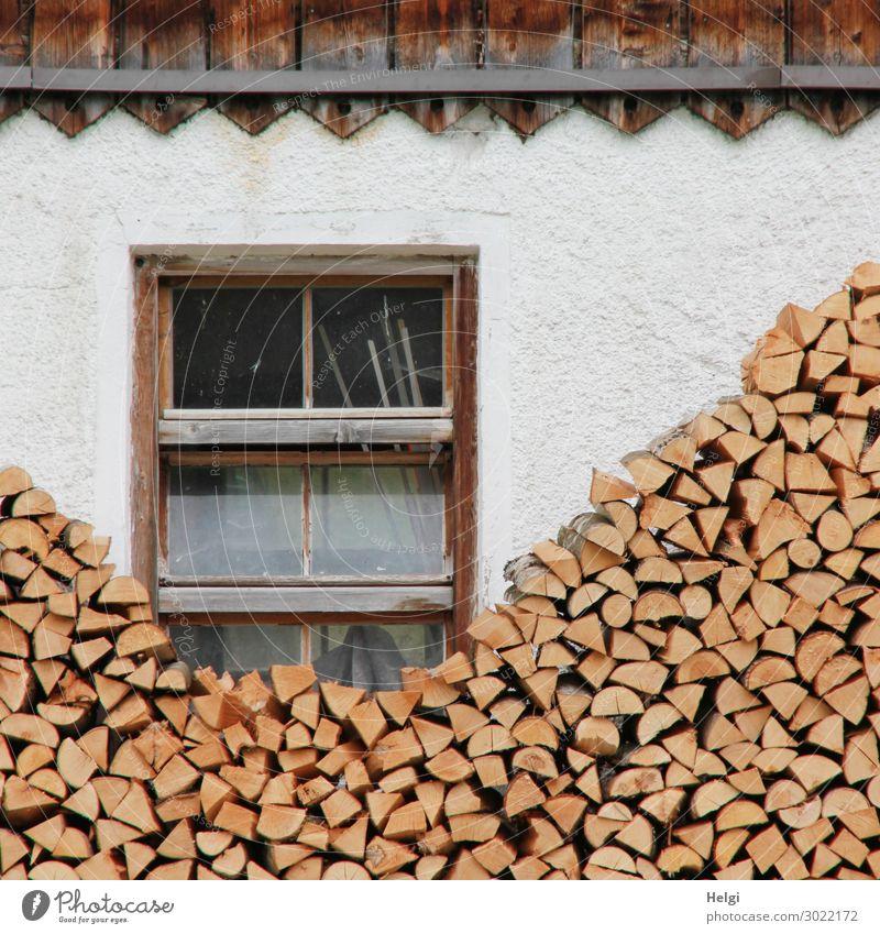 Fassade eines Hauses mit Fenster und viel gestapeltem Brennholz Mauer Wand Holzstapel Stein liegen außergewöhnlich einfach einzigartig braun grau weiß