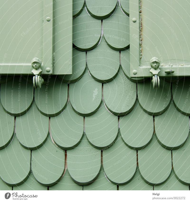 grün angestrichene Holzschindeln und Fensterläden mit Figuren an der Fassade eines Hauses Fensterladen Schindeldach Metall Linie festhalten Häusliches Leben