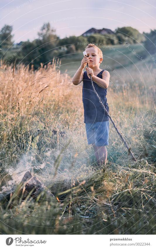 Kleiner Junge, der Marshmallow über einem Lagerfeuer brät. Lifestyle Freude Glück Erholung Freizeit & Hobby Ferien & Urlaub & Reisen Sommer Sommerurlaub Kind