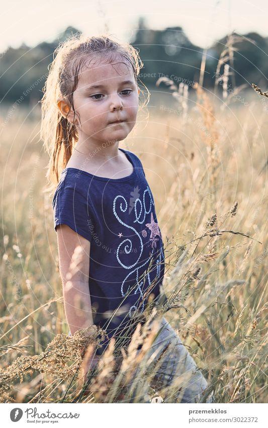 Kleines glückliches lächelndes Mädchen, das in einem hohen Gras spielt. Lifestyle Freude Glück Erholung Ferien & Urlaub & Reisen Sommer Sommerurlaub Kind Mensch