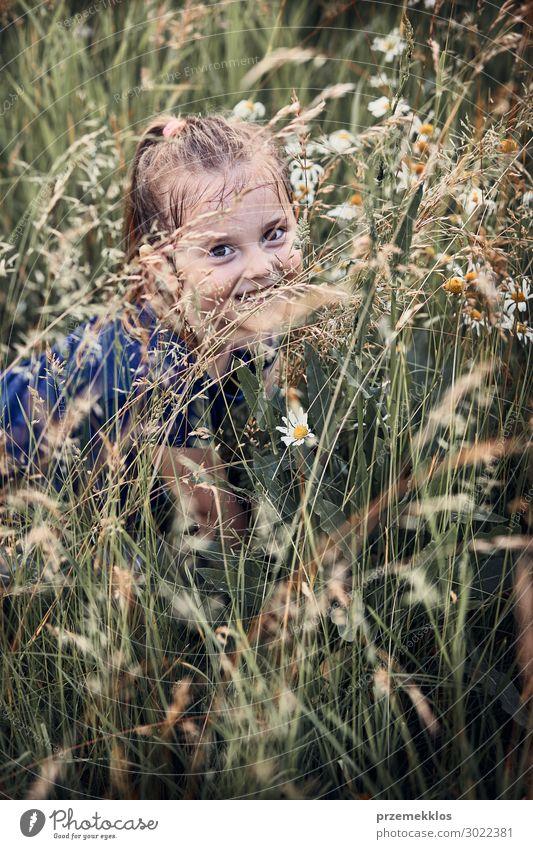 Kleines glückliches Mädchen, das in einem hohen Gras spielt. Lifestyle Freude Glück Erholung Ferien & Urlaub & Reisen Sommer Sommerurlaub Kind Mensch 1